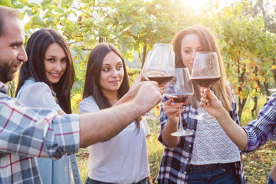 half day wine tours Mudgee