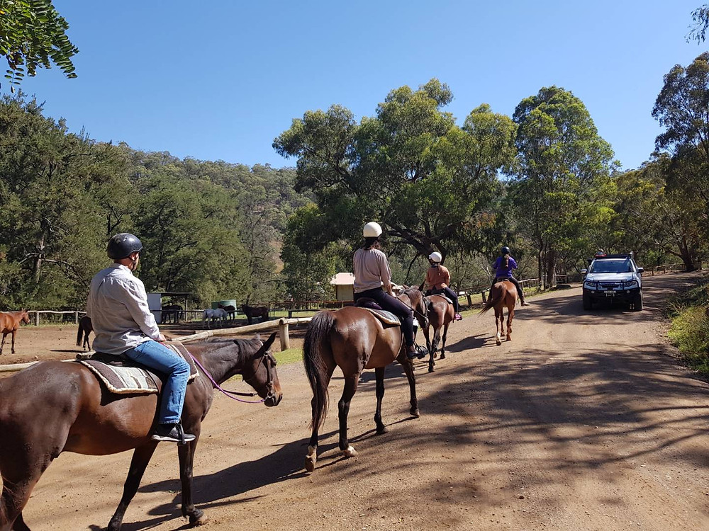 Horse riding Mudgee