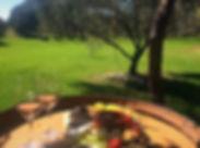 olive nest.1.jpg