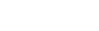 MIS Therapy Horizontal Logo White 1.png