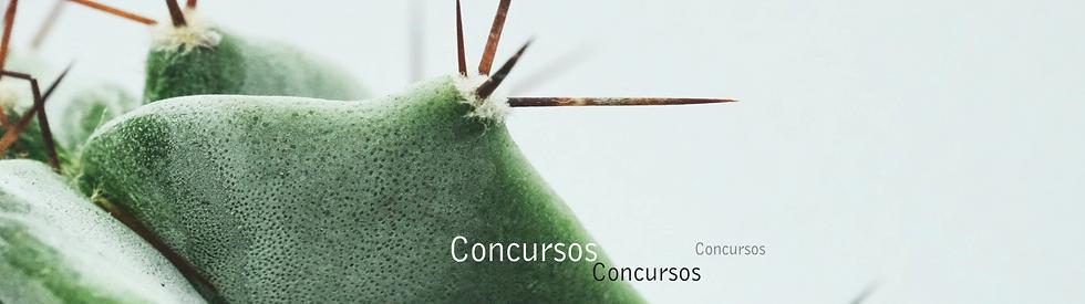 centroconcursos_edited.png