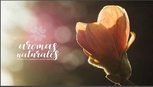 Fragrances, Essential Oils, Natural, Cardamon, Lemongrass, Guatemala, Aromas Naturales