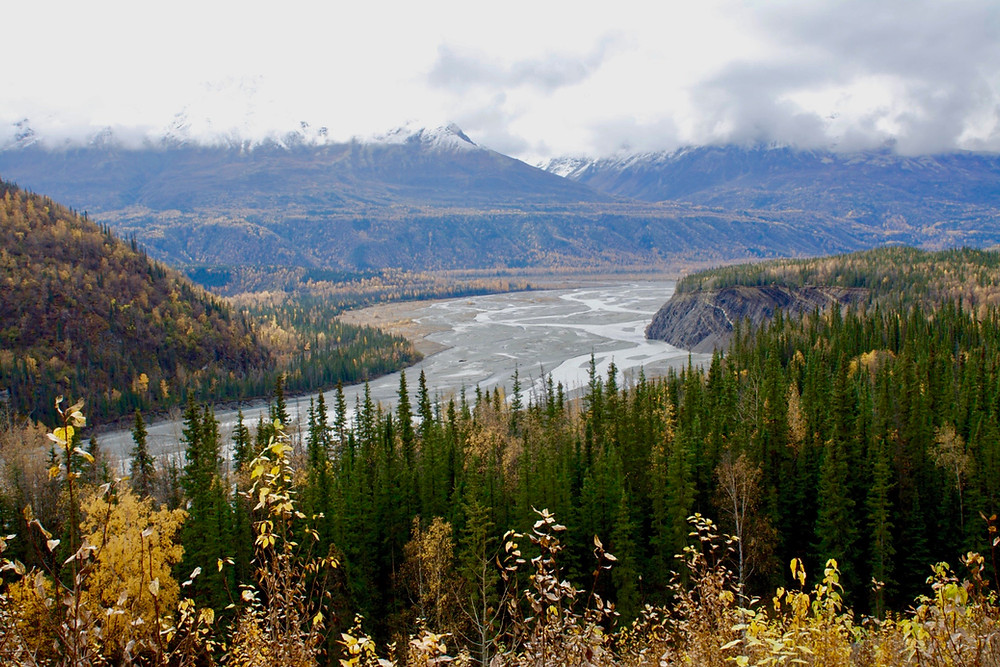 Green and orange leaved trees surrounding a river before snow-capped mountains along the Alaska Highway