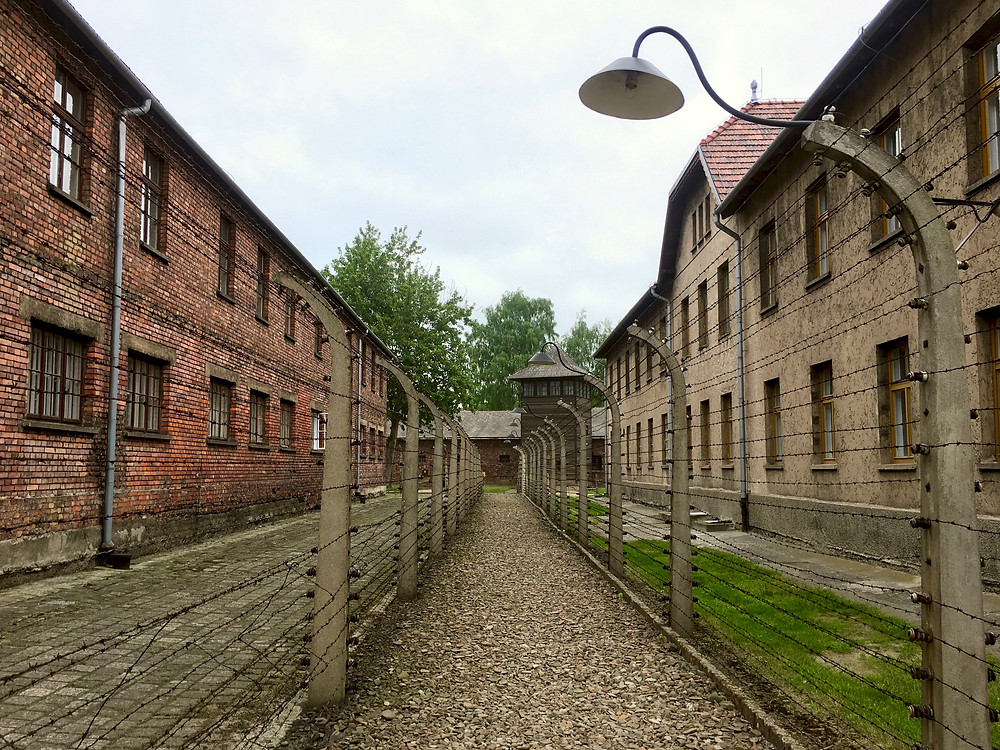 A row of barbed wire fences with brick buildings on either side in Auschwitz I concentration camp