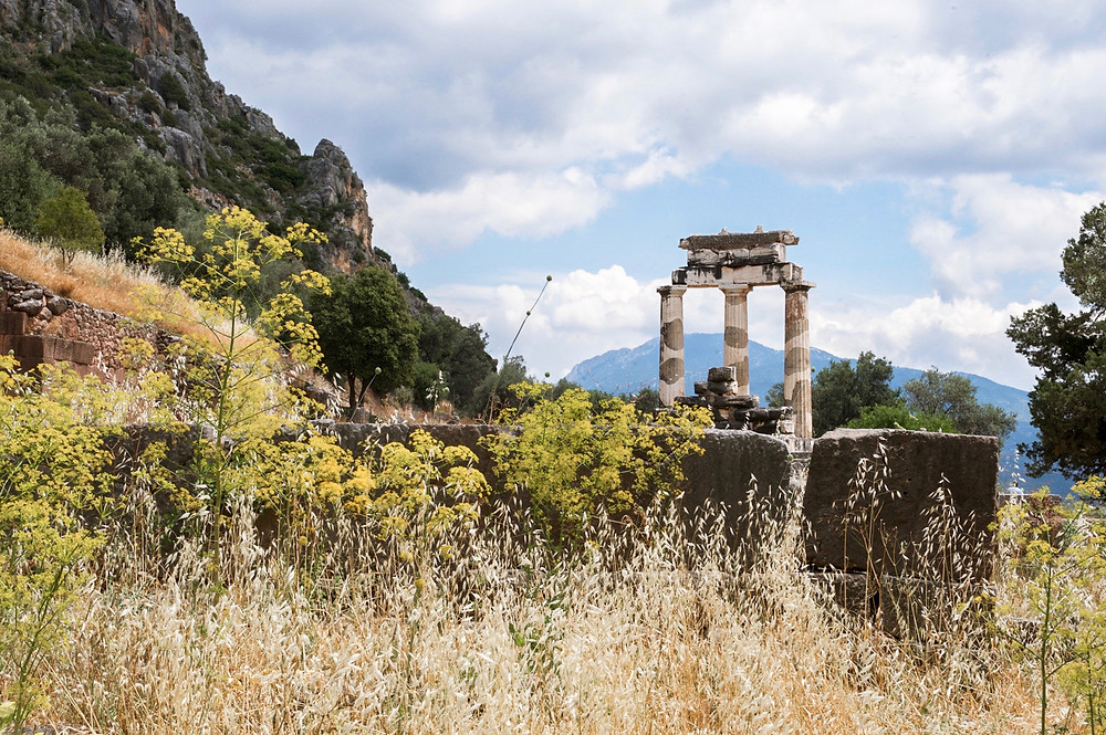 The Tholos of Delphi in the distance behind wild grasses and flowers in the foreground