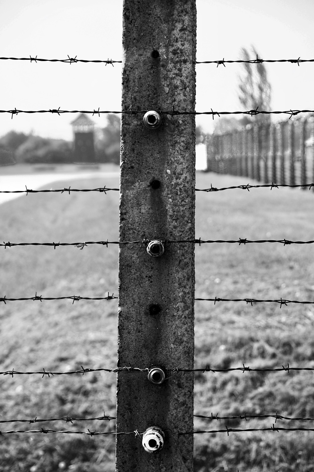 Close up black and white photography of a single barbed wire post at Auschwitz II