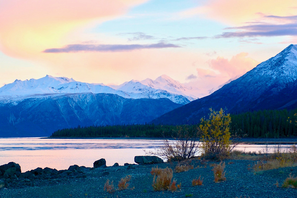 Blue snow-capped mountains under a pink sunset sky by Kluane Lake in Yukon, Canada