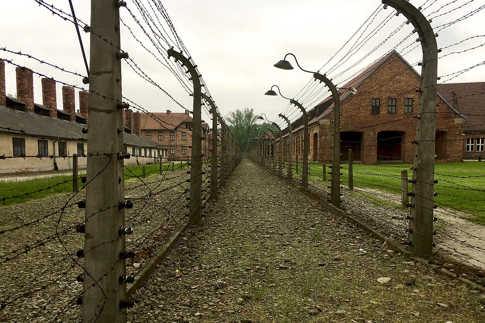 A row of barbed wire fences extend into the distance with brick buildings and green grass behind in Auschwitz I