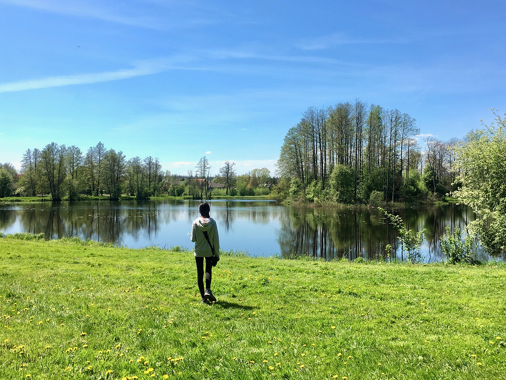 Eryn walks beside a lake among the grass and trees in Bialowieza Forest, Poland