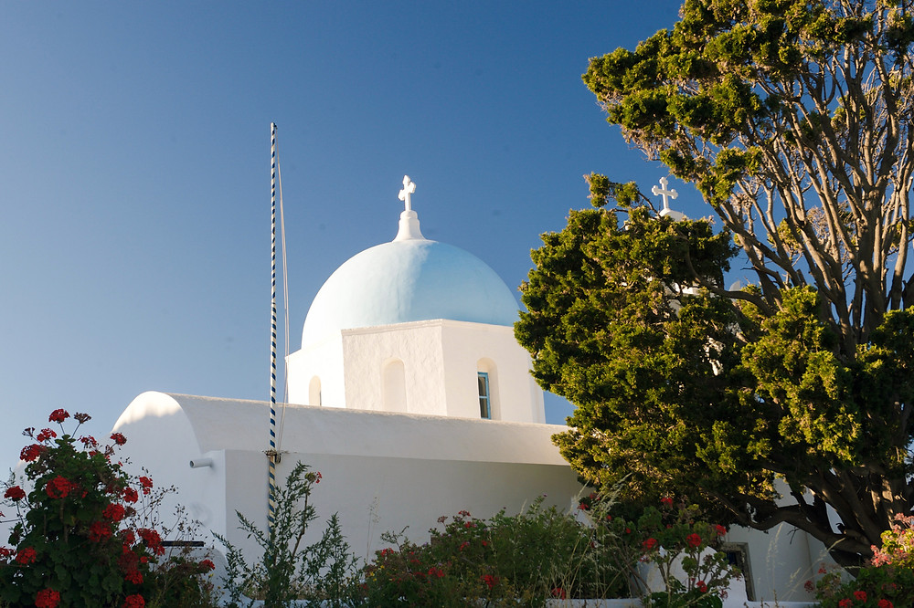The blue dome of the Aghios Artemios church surrounded by greenery in Santorini, Greece