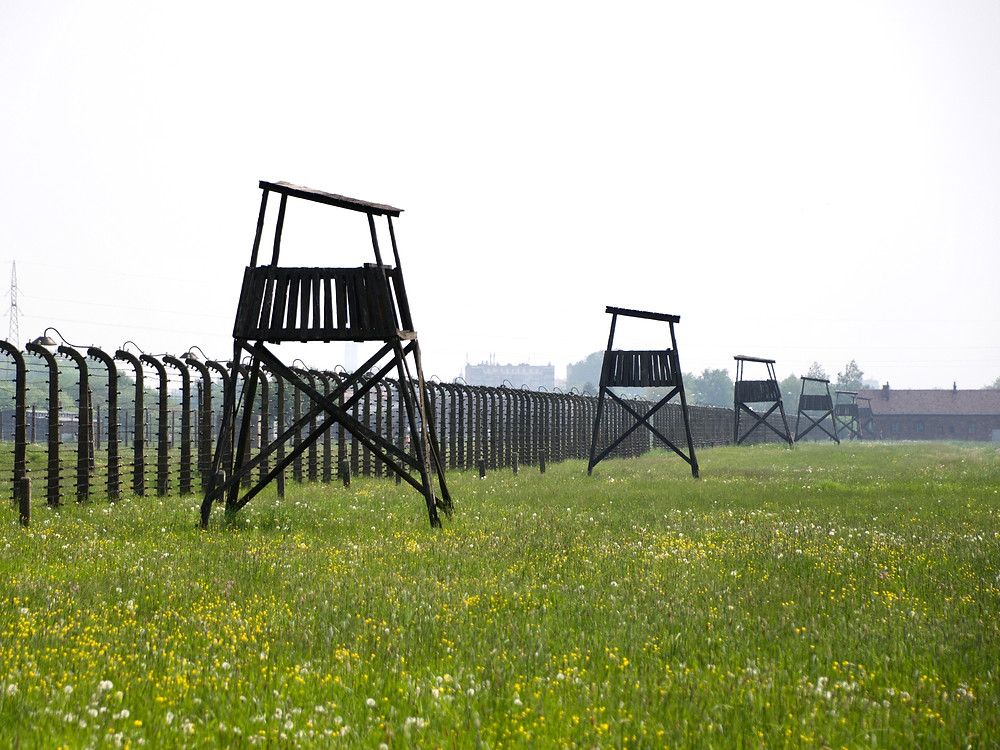 Barbed wire fences and wooden guard post towers stretching across a meadow of green grass at Auschwitz II
