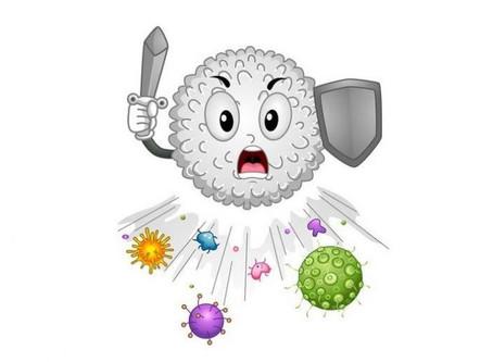 Tu sistema inmune, un ejército de células contra cualquier infección.