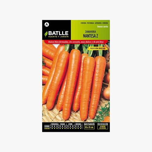 Sementes Hortícolas - Cenoura