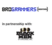 Brogrammers_vp.png