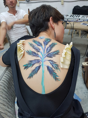 Wings of PIa
