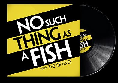 Vinyl Graphic Trans.png