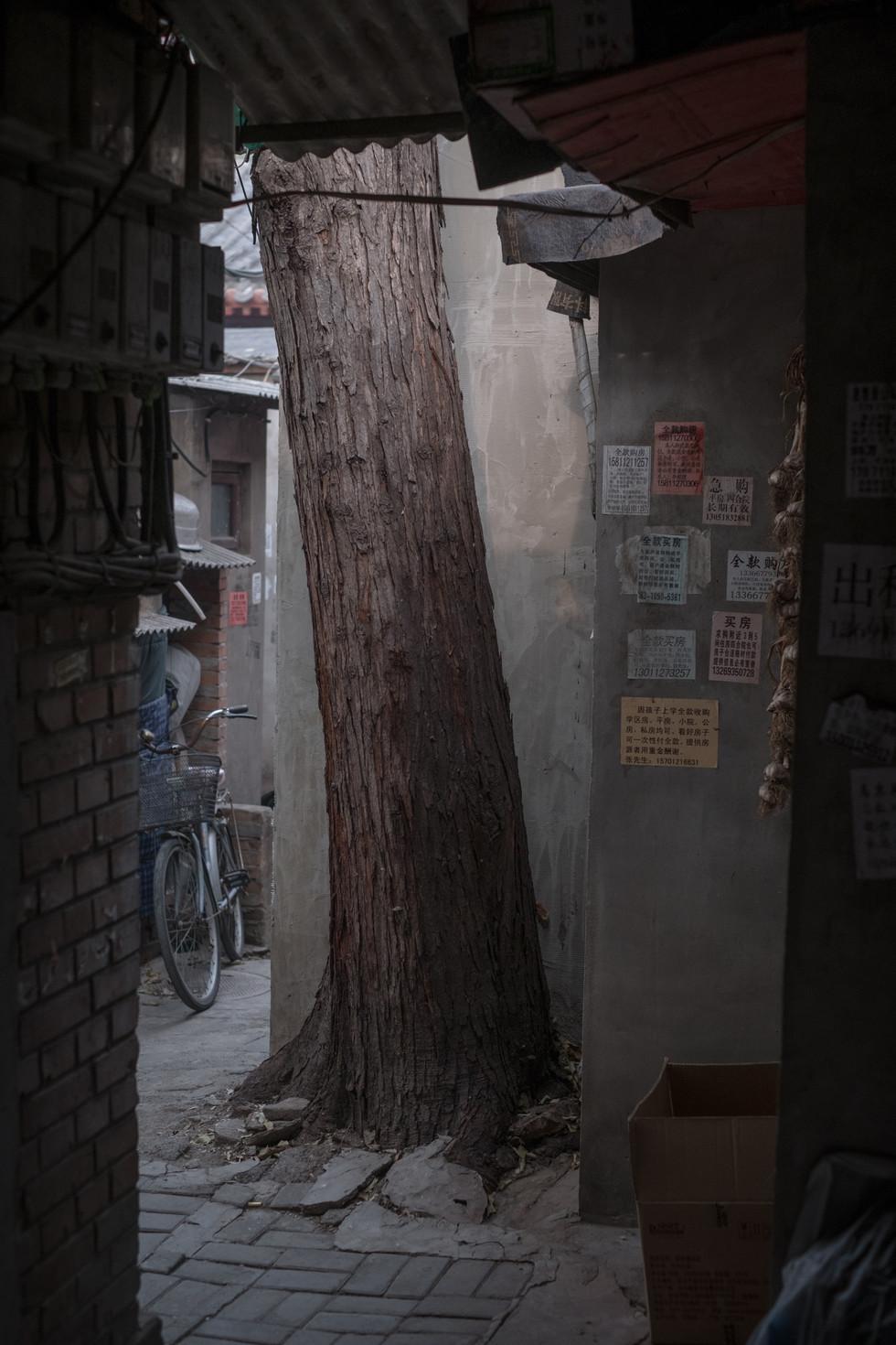 Beijing Part 1
