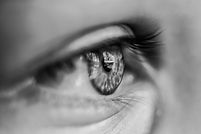 black-and-white-blur-close-up-1047346 (1