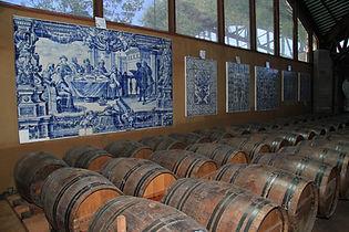 quinta da bacalhoa wine cellar, portugal