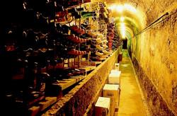 Chafariz cellar