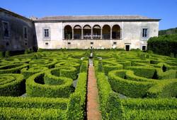 Bacalhôa gardens