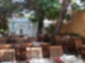 terra,  lisbon vegetarian restaurant