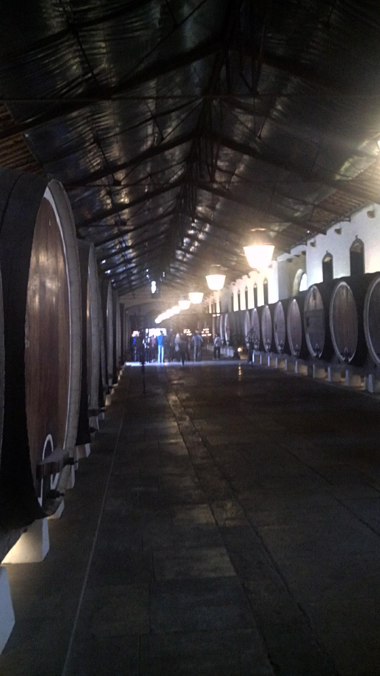 Sintra Wine Tasting Tour