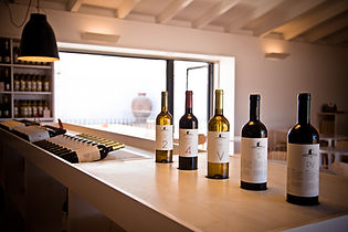 wine tasting tours, portugal