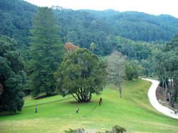Monserrate Park