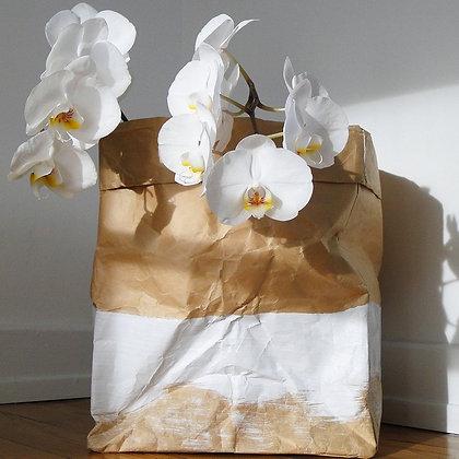 Sac de rangement en papier avec plante