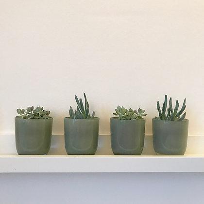 Photophore-vase en verre