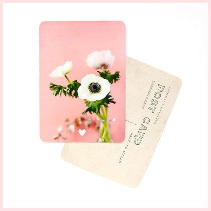 carte postale anémones cinq mai