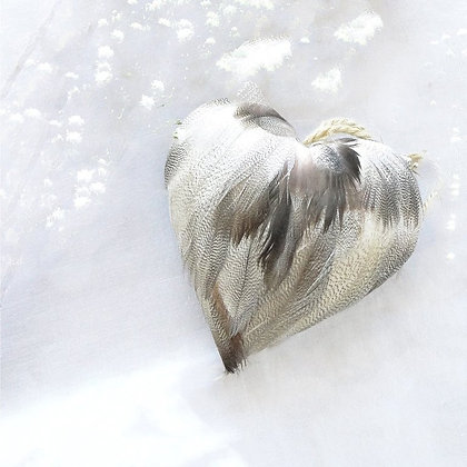 Coeur en plumes