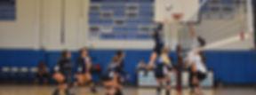 volleyball web.jpg