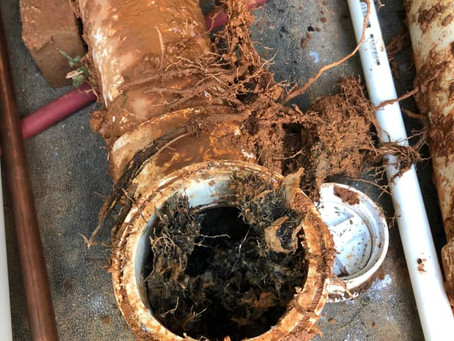 7 Signs of Main Sewer Line Problems