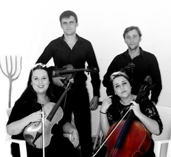cuarteto cello