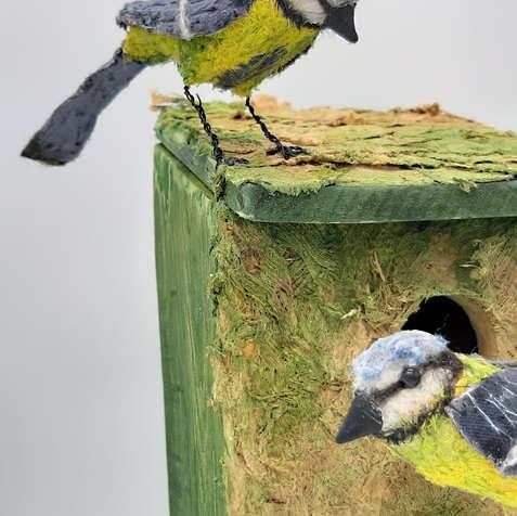 Blue Tits on Bird house.jpg