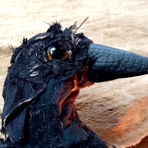 Raven (Detail photo)