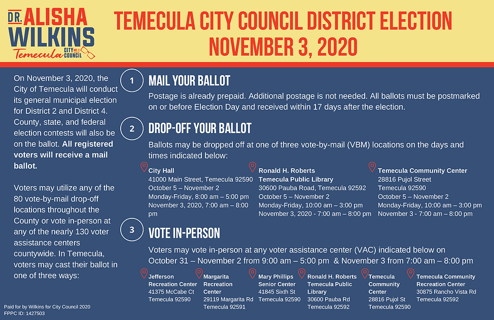 Voter info lit drop pieceV2-2.png
