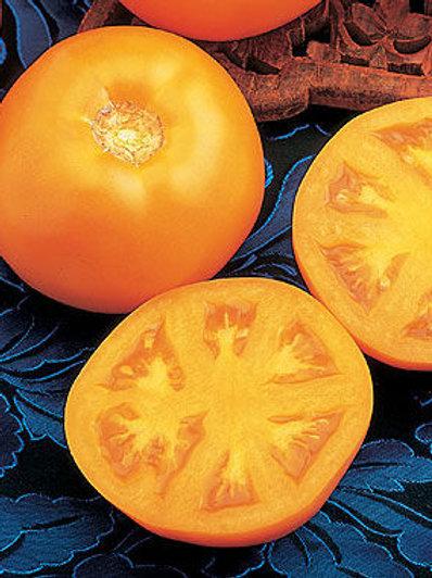 Sweet Tangerine Tomato