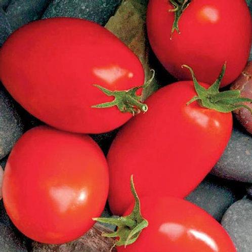 Mariana Paste Tomato