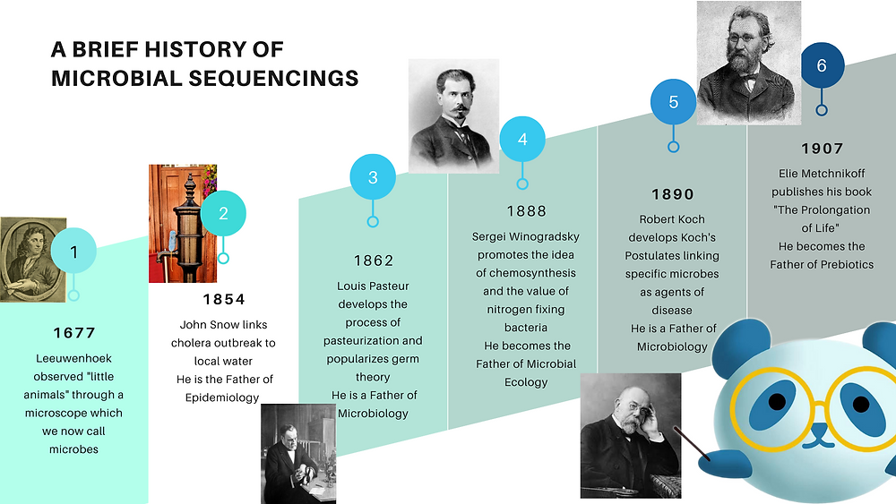 When was microbiology discovered and the early years of microbiology