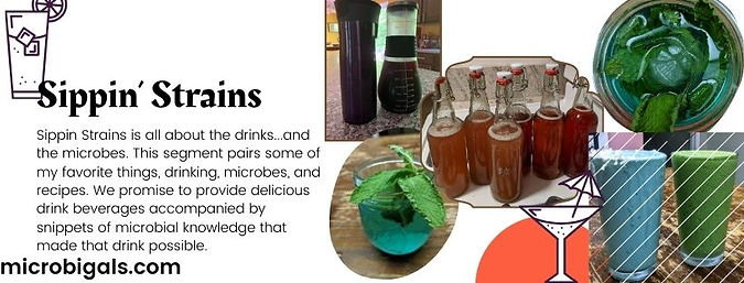 Microbes in Food | Fungi Foods | Fermented Foods and Drinks