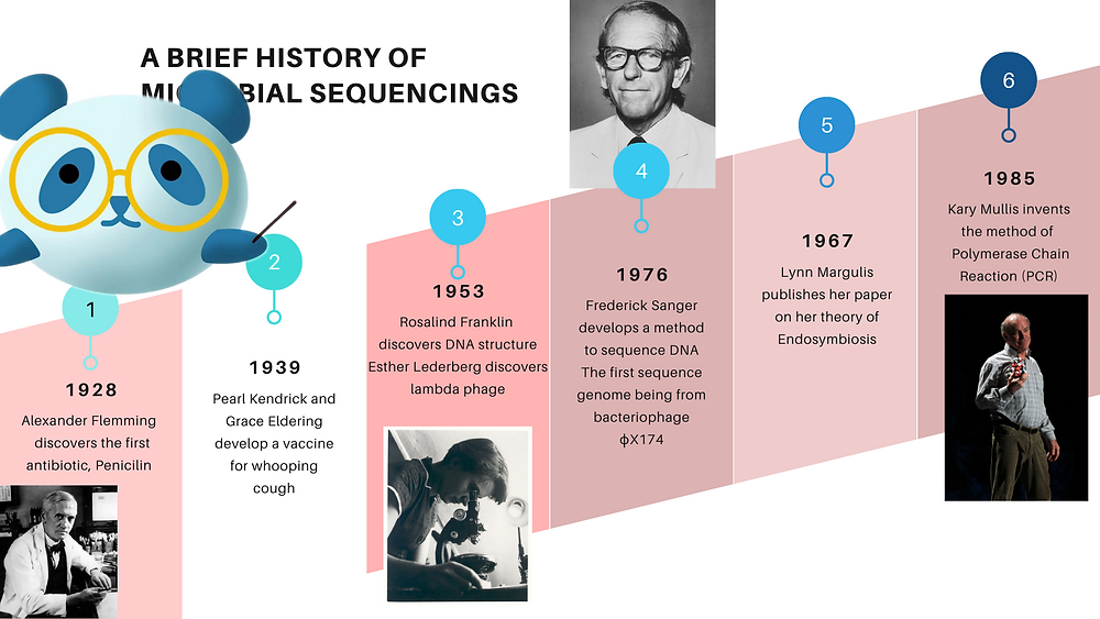 The history of microbiology from 1928- 1985