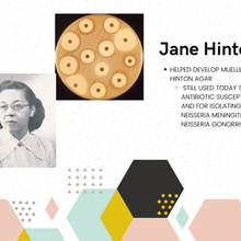 Who Was Jane Hinton And What Is Her Legacy In Microbiology?