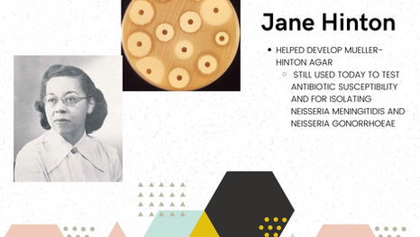 Jane Hinton: Co-developer of Mueller-Hinton Agar