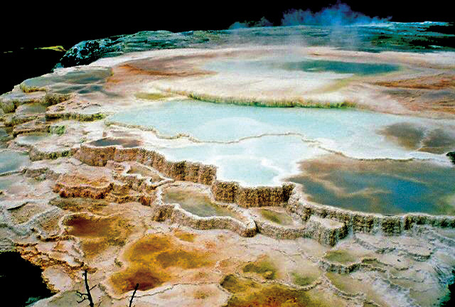environment that houses extremophiles