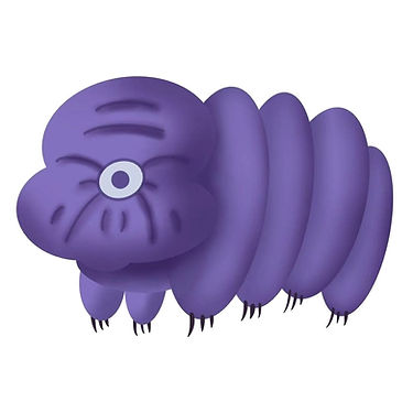 picture of a the most well known example of an extremophile : a tardigrade names Timmy