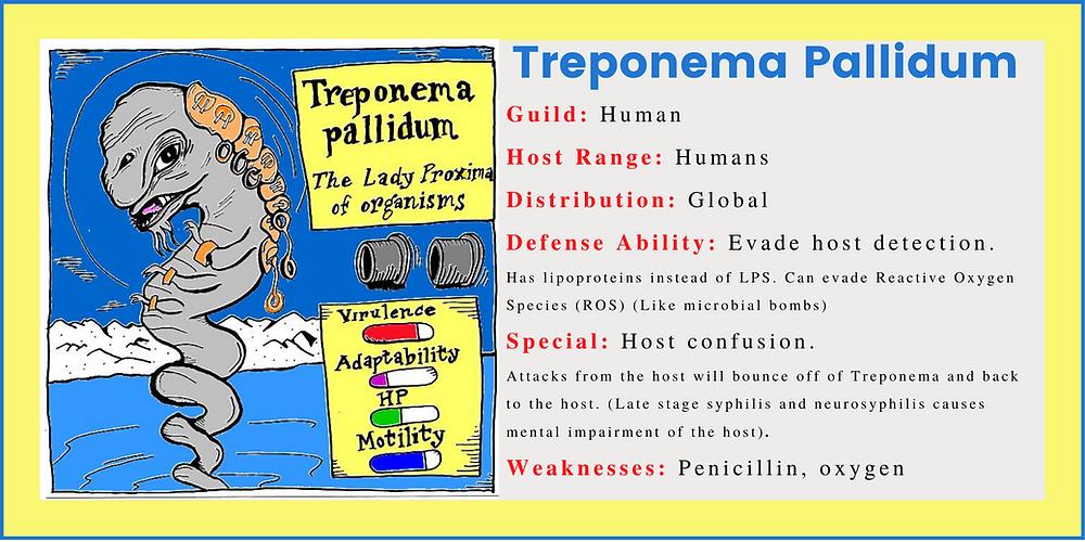 Human Microbes : Treponema Pallidum Playing Card