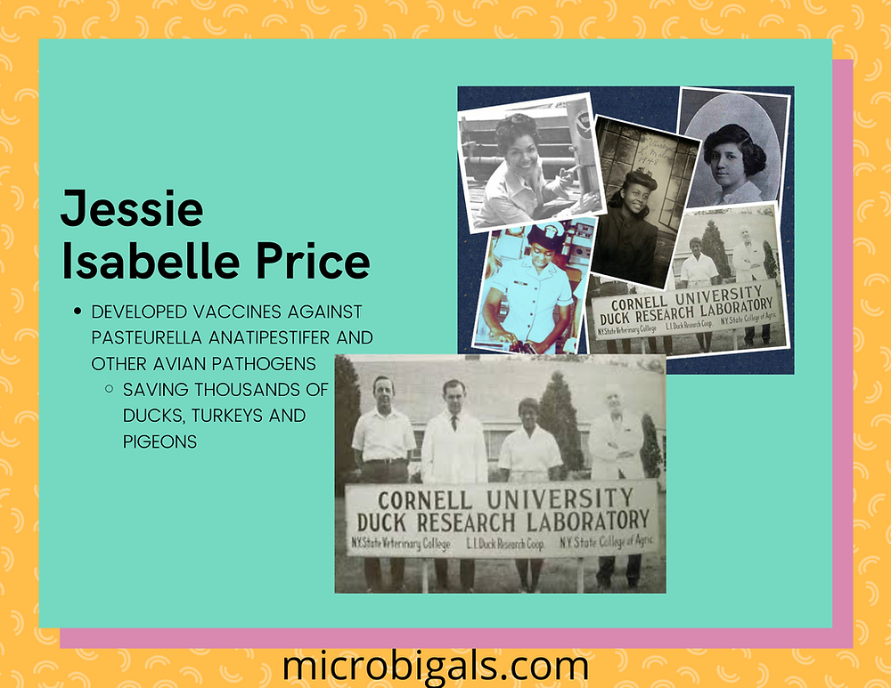 Jessie Isabelle Price quick facts and pictures